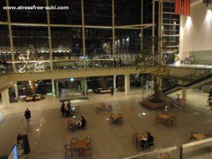 夜のiichiko総合文化センター1